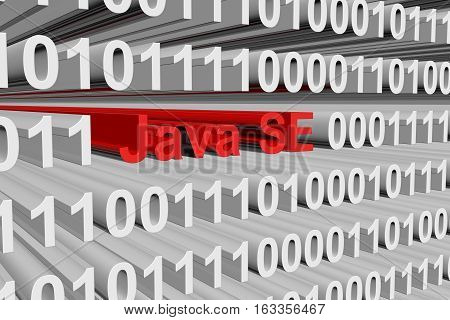 Java SE in the form of binary code, 3D illustration