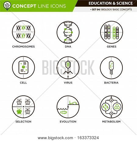 Biology basic concepts line icons in white isolated background used for school and university education and document decoration, create by vector