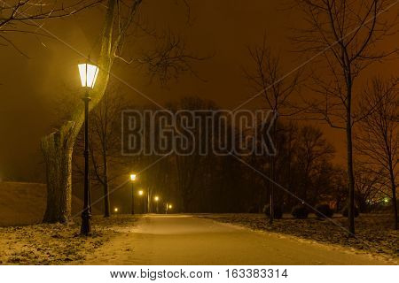 Illuminated night park alley view with lanterns during heavy snowing. Snow-covered trees. Heavy snowing night