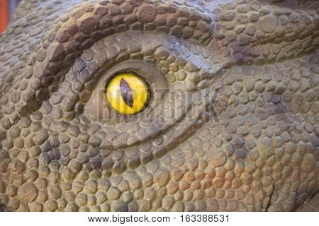 A Yellow Reptile Eye To Create An Urban And Contemporary Background