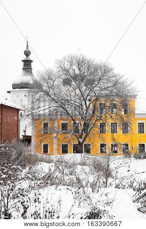 City landscape in the winter. The city of Rostov, Yaroslavl region, Russia. Rostov - ancient Russian city. Silhouette of bare tree.