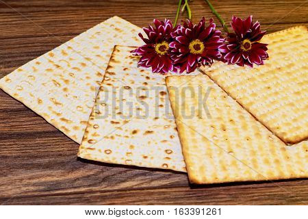 Passover Background. Matzoh Jewish Holiday Bread And Flowers On Gerbera