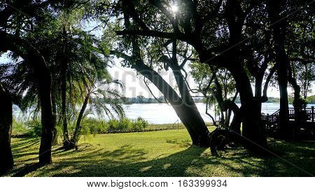 View through shady trees and palm trees to the Zambezi River in Zambia, on the other side of the river ist Zimbabwe