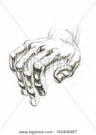 Academic Drawing Hands Of David