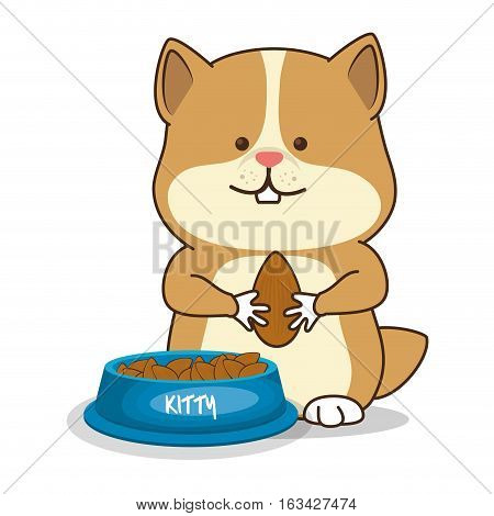 hamster pet shop icon vector illustration design