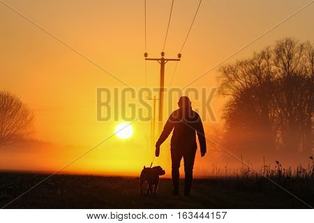 Attractive Young female walks her dog in the countryside and into the sunset