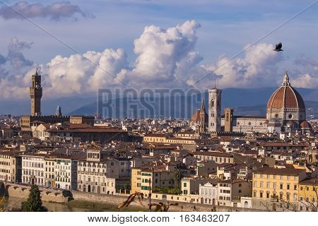 Italy. Florence. View of the historic part of town. Florence is the ancient capital city of the Italian region of Tuscany, on the banks of the River Arno.Crow with prey flying over Florence.