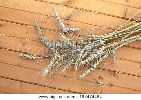 Still Life with ears of rye, lying on a wooden surface closeup view
