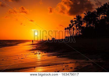 Dominican Republic, Punta Cana Beach