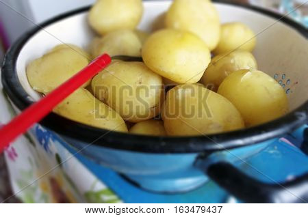 Rural potatoes in a blue vintage colander. Raw potatoe food