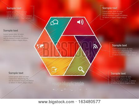 Illustration infographic template with motif of hexagon regularly divided to six color sections. Blurred photo with natural motif is used as background with few red physalis blooms on wooden board.
