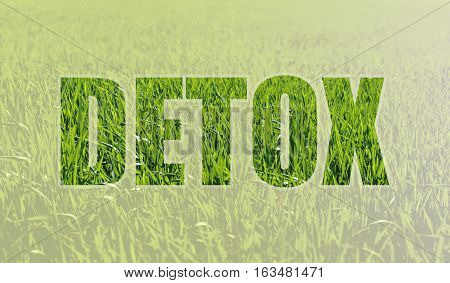 Background with fresh green grass symbolizing the rebirth and the inscription DETOX. Detoxification helps rid the body of toxins. Alternative medicine