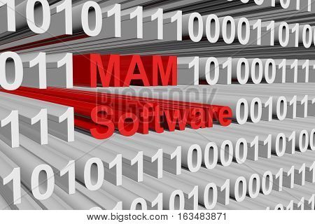 MAM software, represented in the form of binary code 3d illustration