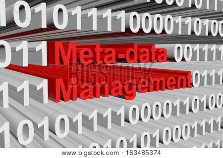 meta data management is presented in the form of binary code 3d illustration