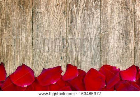 the close upRed petals on wood background
