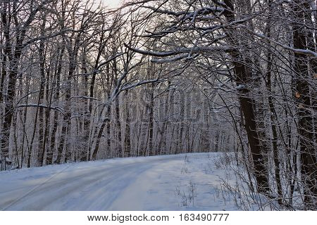 The road through the winter woods. Everything is covered with snow. Right turn