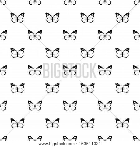 Insect butterfly with big wings pattern. Simple illustration of insect butterfly with big wings vector pattern for web