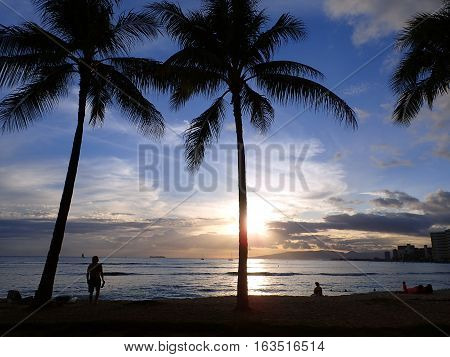 WAIKIKI USA - MAY 15: Dramatic lighting of Sunsets through Coconut trees over Waianae mountains with light reflecting on ocean and illuminating the sky with boats sailing on the water off Waikiki Beach on Oahu Hawaii. May 15 2016.