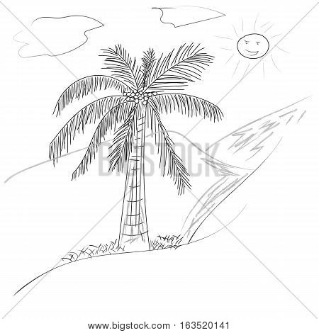 palm tree coconut with leaves and sun Hand drawn style design in outline monochrome contour on white background Vector illustration art line pattern