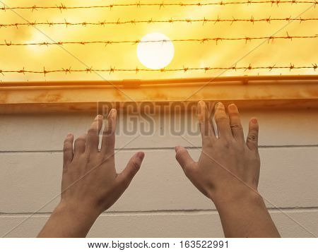 Hand raise to barbed wire or barbwire on concrete wall with sun in sky background