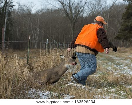 A hunter with a Whitetail deer in Minnesota