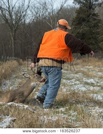 A deer hunter in Minnesota with a Whitetail Deer