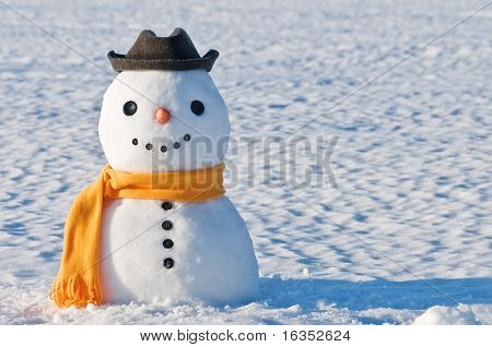 cute snowman on snowy field