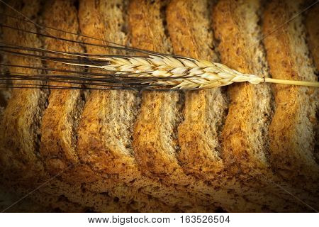 Detail of healthy rusks of wholemeal flour with a ear of wheat