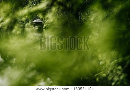 forest barn cabin wood lumberjack green timber