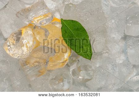 Citrus slice and a leaf laying in ice cubes