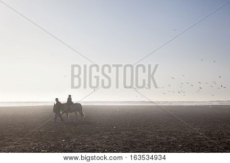 CONCON-JUNE 7 2015: Many Chilean tourists gather on the beach's Concon to watch the sunset and do many activities like horse rides on the sand on June 7, 2015. Chile
