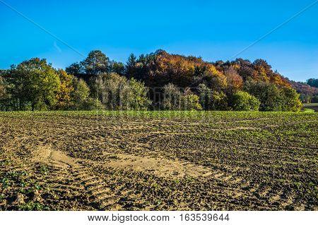 Landscape picture of Grub in Pielachvalley in autumn