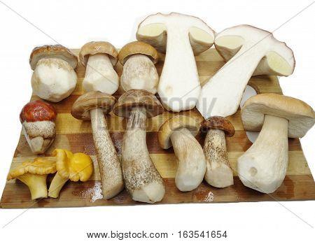 fresh edible forest mushrooms on cutting board