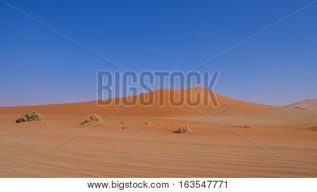 Sand dunei in Namib-Naukluft National Park, Namibia
