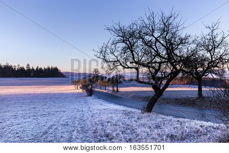 Winter landscape at sunrise and silhouette of trees. Moravian landscape Okrouhla.