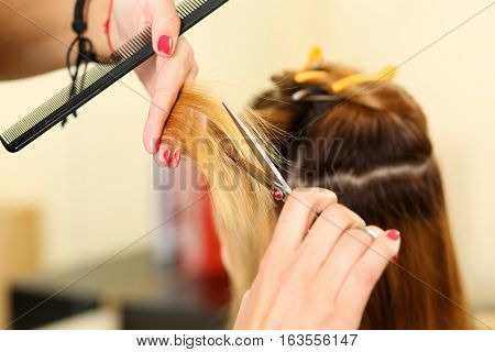 Female Hairdresser Hold In Hand Between Fingers Lock Of Blonde Hair