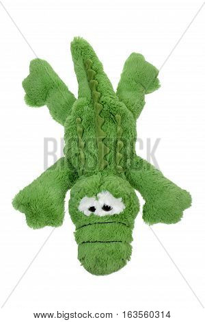 Soft Toy Crocodile on Isolated White Background