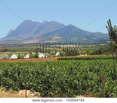Farm Lands, Franchhoek, Western Cape, South Africa