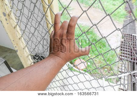 Hand with steel mesh fence in Jail concept of life imprisonment Select focus with shallow depth of field.