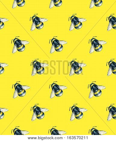 Bumblebee on a yellow background. Watercolor drawing. Insects art. Handwork. Seamless pattern