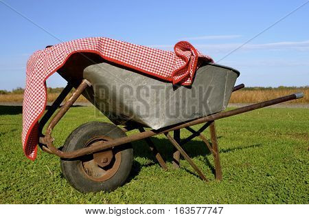 An old rusty wheelbarrow is decorated with a gingham tablecloth