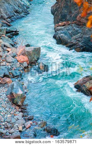 Fast mountain stream current blue among red rocks autumn