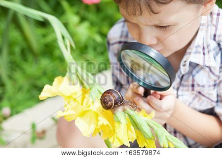 Happy Little Boy Playing In The Park With Snail At The Day Time.