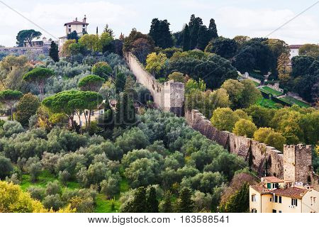 View Of Green Gardens And Wall Of Giardino Bardini