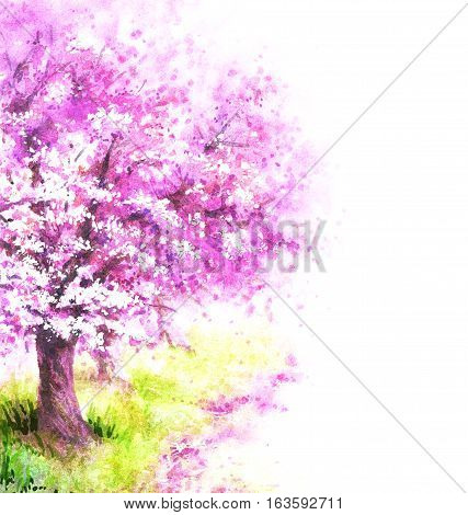 Hand drawn watercolor illustration. Nature landscape. Spring background with pink blossoming sakura tree.