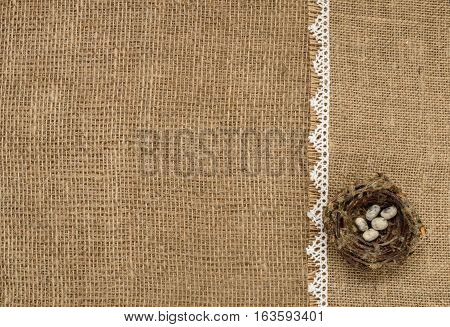 bird's nest on a background of burlap. Place for text