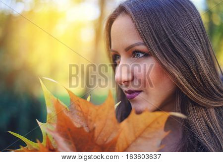 Attractive young brunette woman collecting fall leaves posing looking to the side with a bunch held close to her face against the warm glow of the evening sun