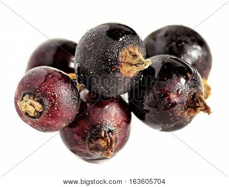 Currants berries. Ripe currants close up isolated