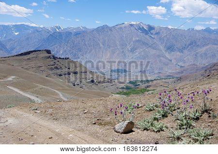 Himalayan landscape near Kargil in Ladakh, India