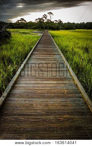 Stormy Boardwalk into the Unknown, Hunting Island, South Carolina